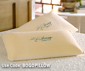 BogoPillowSmall TIME FOR SPRING CLEANING WITH NATURES SLEEP!