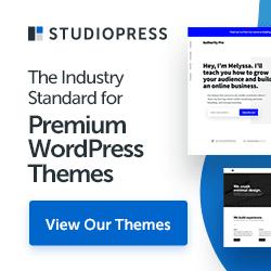 31 StudioPressThemes250x250 114063 00