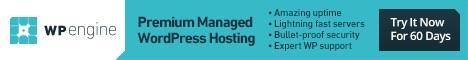 WP Engine  - Web Hosting