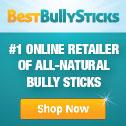#1 online retailer