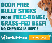 Natural Odor-free Bully Sticks