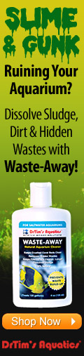 Dissolve Sludge, Dirt and Hidden Wastes with Waster-Away from Dr.Tims Aquatics
