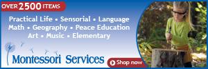 Montessori Language Arts: Learning Nouns with FREE Printables