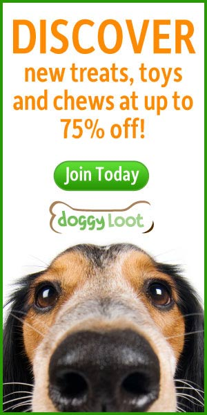 Discover new treats, toys and chews at up to 75% off