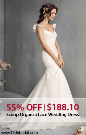 55% OFF Scoop Organza Lace Wedding Dress  at DidoBridal.com