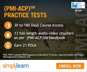 PMI-ACP Online Course