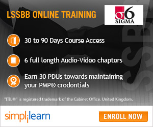 Lean Six Sigma Black Belt Online Course
