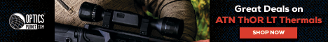 308 Hunting Rifle With Scope
