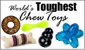 tough chew toys
