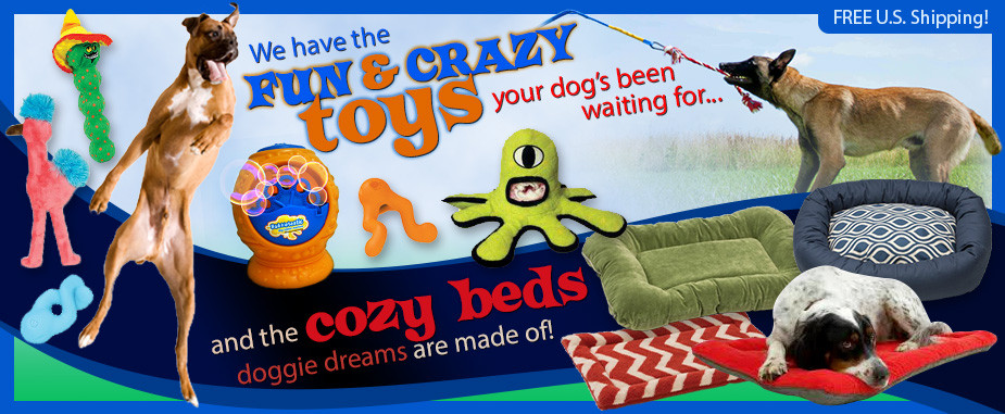 fun and crazy dog toys