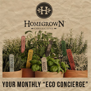 your eco-concierge