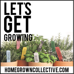 Homegrown Collective