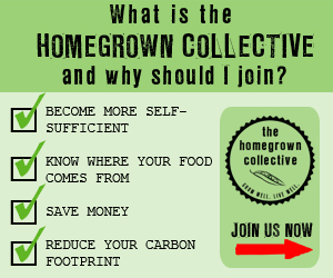 Homegrown Collective Join Now