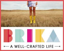 BRIKA Banner 1