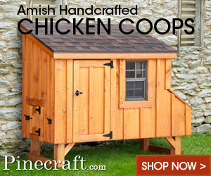 Amish Handcrafted Chicken Coops