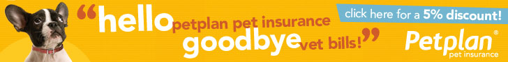 Save on Vet Bills with PetPlan Insurance