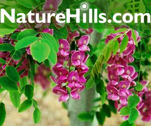 Shop Nature Hills