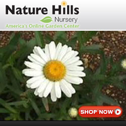 Plan Springtime Flowers Shop for annuals at NatureHills.com
