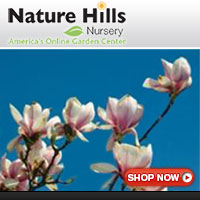 Shop for Magnolia Trees at NatureHills.com