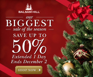 20141128 our biggest sale of the seas_00jpg - Balsam Hills Christmas Trees