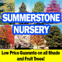Low Price Guarantee on Shade & Fruit Trees