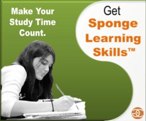 sponge learning skills