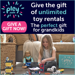 Pley - leading toy rental company