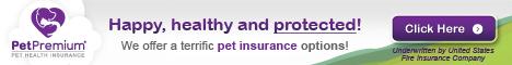 Save on Vet Bills with PetPremium Insurance