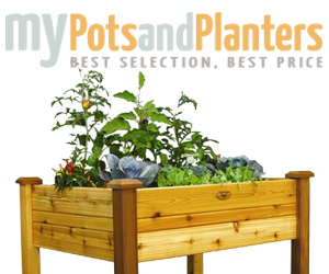 My Pots and Planters Container Gardening, 300x250