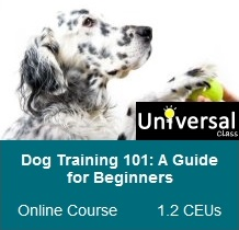 Dog Training 101: A Guide for Beginners - Universal Class Online Course