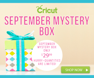 Cricut September Mystery Box
