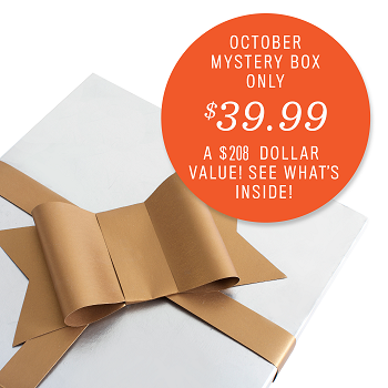 Cricut October Mystery Box - 4 cartridges & more!!