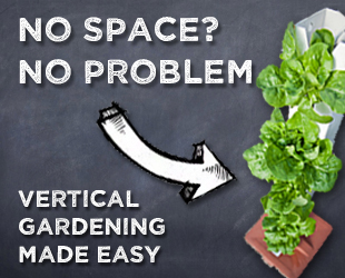 about starting a vertical garden