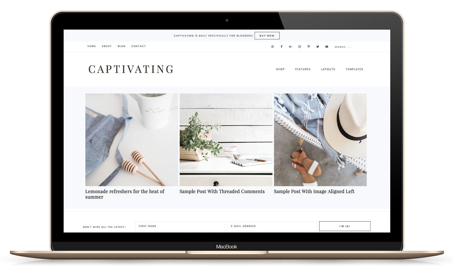 Captivating WordPress Theme for Bloggers