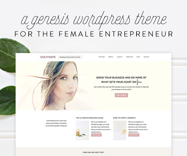 Stunning Feminine WordPress themes
