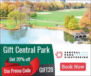 20% Off, Gift Card, Central Park, Offer, Discount