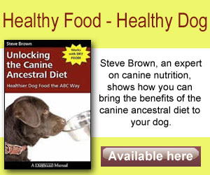 What Ingredients Should Be Avoided In Dog Food
