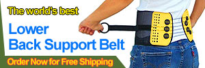 BaxMax - Lower Back Support Belt