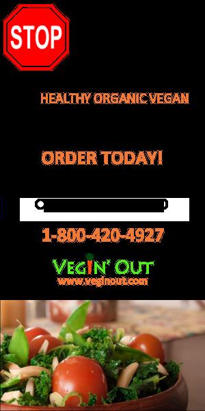 vegan meal
