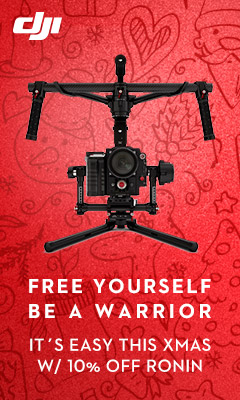 Free yourself be a warrior - It's easy this XMas with 10% off Ronin