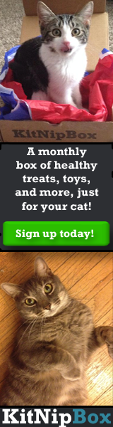 A monthly box of healthy treats, toys, and more, just for your cat!