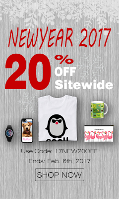 Snapmade 2017 New Year - 20% OFF Sitewide -240*400