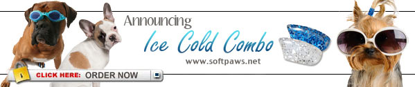 Ice Cold Summer SoftPaws.com