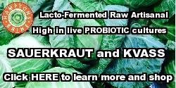 Lacto-Fermented