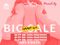 Single Day Big Sale