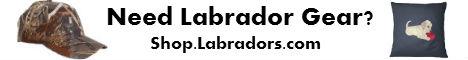 Labradors.com Coupon