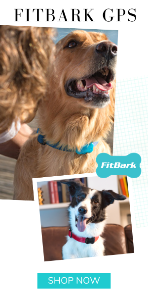 FitBarkGPS HealthandLocationMonitors 01