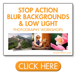 Stop Action, Blur Backgrounds & Low Light Workshop