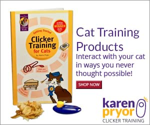 Interact with your cat in ways you never thought possible.