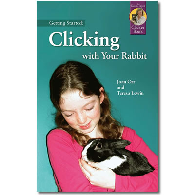 Getting Started: Clicking with your Rabbit
